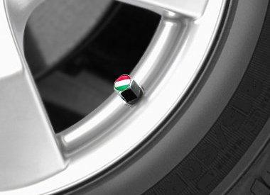 Tire valve caps - Universal