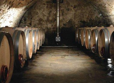 Cave de la Petite Révolution, Provence