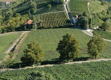 Borgo Maragliano, Piemont