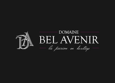 Domaine Bel Avenir, Beaujolais