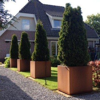 Andes cortenstaal met poten 60x60x60 cm plantenbak