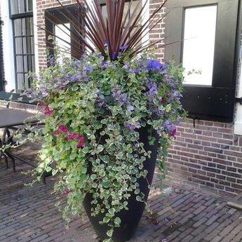 CANNA polyester 100x95 cm ronde plantenbak