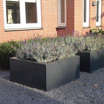 Buxus polyester 100x40x80 cm plantenbak