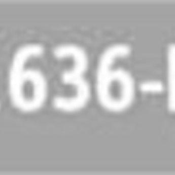 Ministeck 636 - P2 (Graustufen)