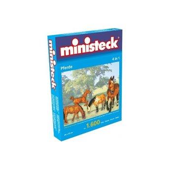 Ministeck Paarden