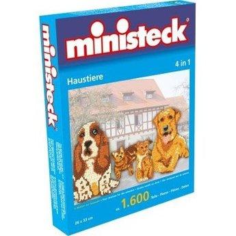 Ministeck Huisdieren