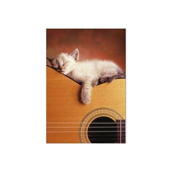 Educa My Guitar