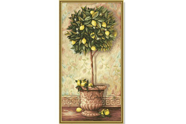 Schipper Citrus Limonum