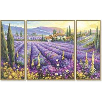 Schipper Lavendelvelden