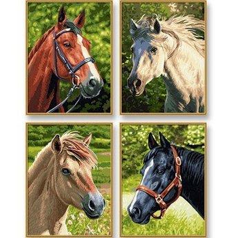 Schipper Horses & Ponies