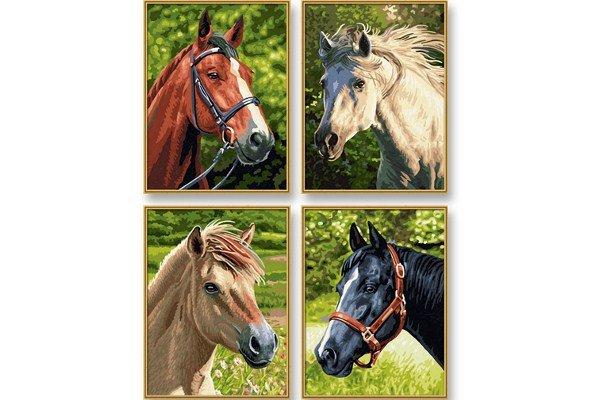 Schipper Paarden & Pony