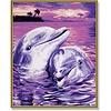 Schipper Dolfijnen