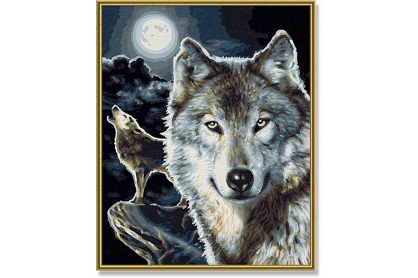 Schipper Wolves