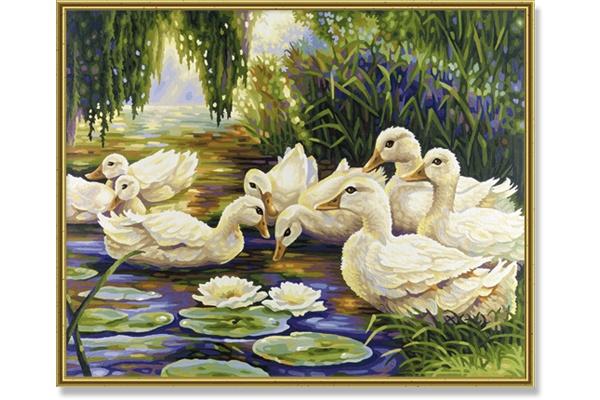 Schipper At the Duck Pond