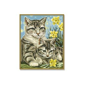 Schipper Mother cats