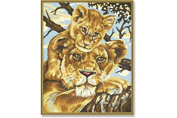Schipper Lioness with Young