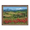 Riolis Tuscany