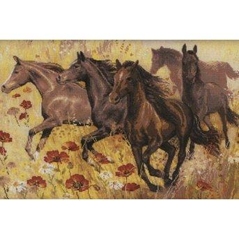 Riolis Trabende Pferde im Klatschmohnfeld