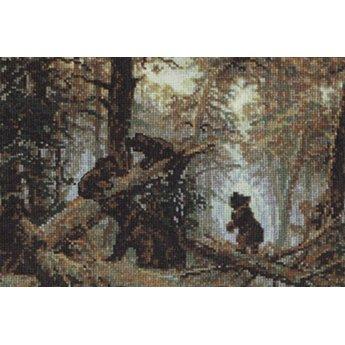 Riolis Bären in einem Kiefernwald