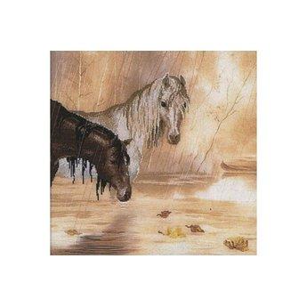 Riolis Pferde im Regen