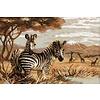 Riolis Die Zebras in der Savanne