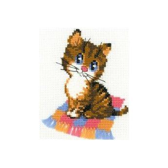 Riolis Kitten