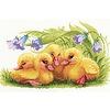 Riolis Funny Ducklings
