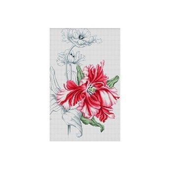 Luca-S Red Tulip
