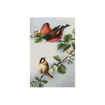 RTO Vögel auf Ästen