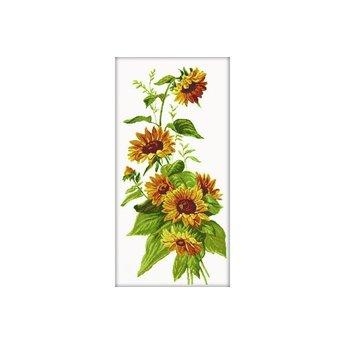 RTO Sonnenblumen
