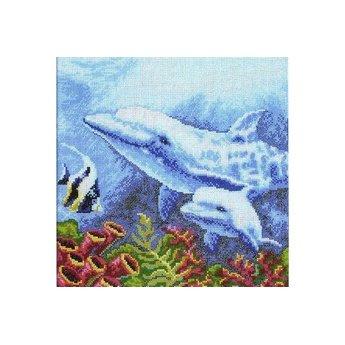 RTO Dolphins