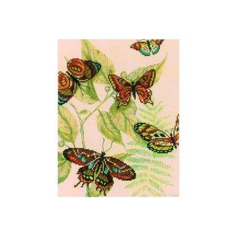 RTO Butterfly Kingdom