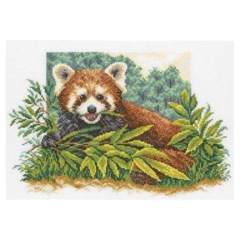 RTO Curious Panda