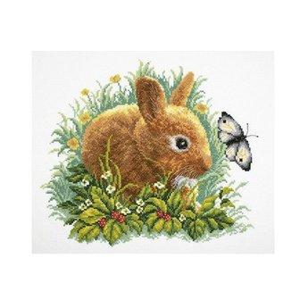 RTO Kaninchen und Schmetterling