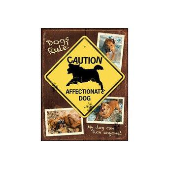 SunsOut Dogs Rule