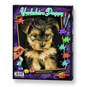Schipper Yorkshire Puppy