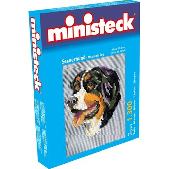 Ministeck Bernese Mountain Dog