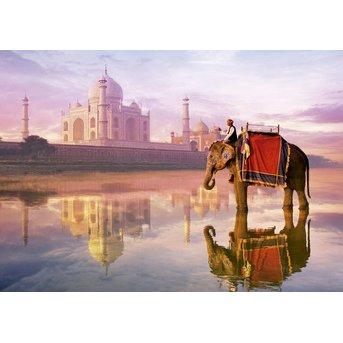 Educa Elefant am Taj Mahal