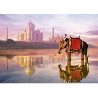 Educa Elephant at Taj Mahal