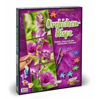 Schipper Orchideen-Rispe