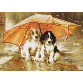 Luca-S Couple under an Umbrella