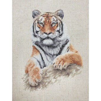 Luca-S Tiger