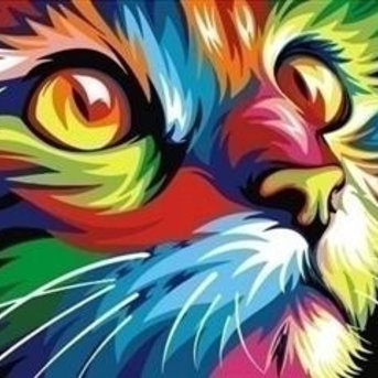 Artventura Rainbow Cat