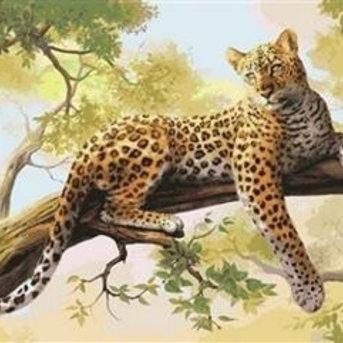 Artventura Leopard