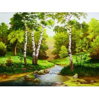 Artibalta River in the Forrest