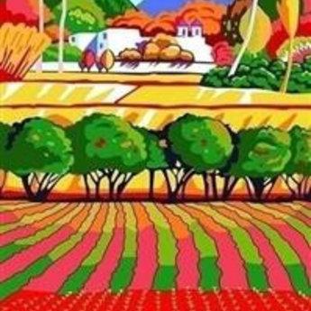 Artventura Regenboog Landschap