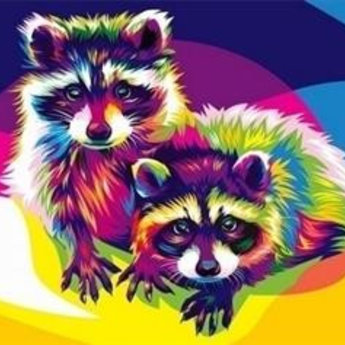 Artventura Rainbow Racoons