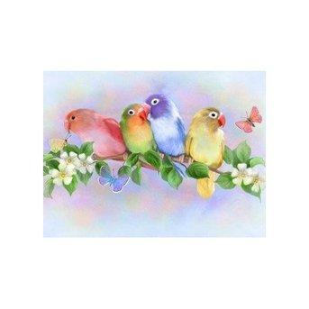 Artibalta Liefdesvogels