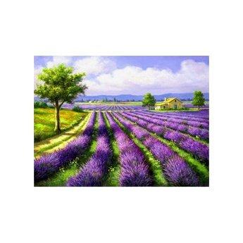 Artibalta Lavender Field
