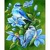 Artibalta Vogel op de Tak